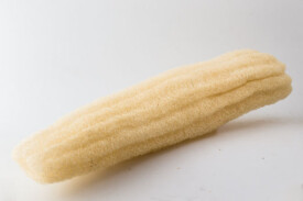 Zucca Giapponese Loofah Super 40cm
